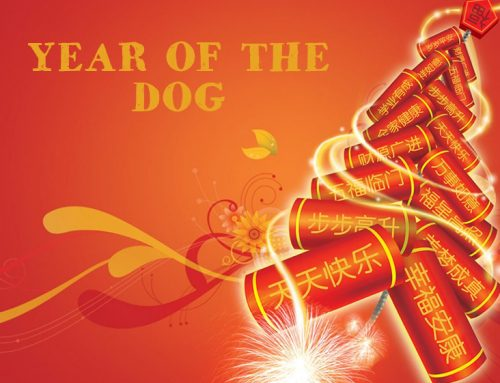 Celebrating Chinese New Year – the Year of the Dog